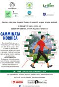 Camminata nordica